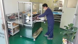 진공포장기ㆍ진공포장기계  AP-100ES-G