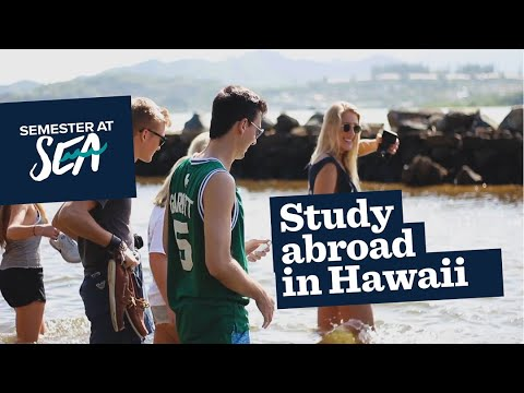 Hawaii Study Abroad - Semester at Sea Spring 2018 Recap