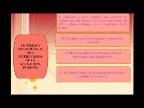 Fase intermedia preparacion al juicio oral en mxico youtube ccuart Gallery