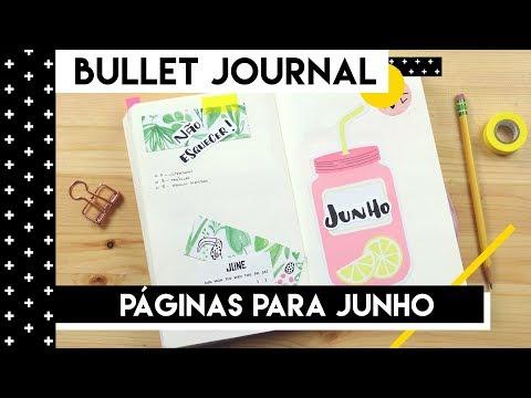 BULLET JOURNAL  SETUP JUNHO   Aline Albino