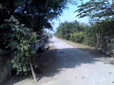 QUÊ HƯƠNG GIAO CHÂU - Vu Van Sy - Giao Chau - Giao Thuy - Nam Dinh