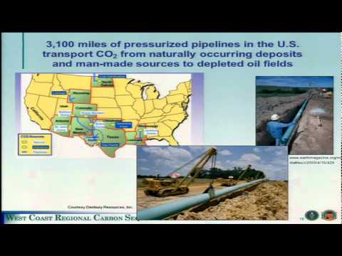 The Role of Carbon Capture, Utilization and Storage in ...