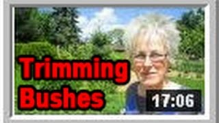 Trimming Bushes - Wisconsin Garden Video Blog 528