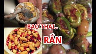 8 Món Ăn Kinh Dị Nhất Việt Nam Thách Bạn Dám Thử   Bào Thai Rắn Lục - Đuông Dừa - Cá Ngáp