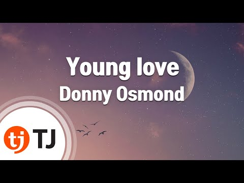 [TJ노래방] Young love - Donny Osmond (Young love - Donny Osmond) / TJ Karaoke