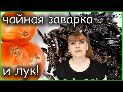 Вопрос: Можно ли в почвосмесь добавлять высушенную чайную заварку?