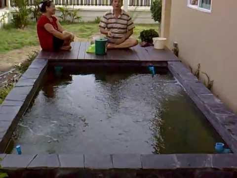 บ่อปลาคาร์ฟนนทบุรี 2