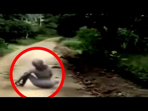 20 Scariest Creatures Caught on Tape
