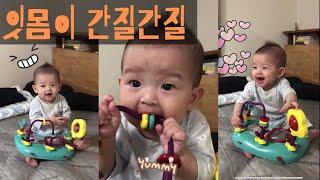 잇몸이 간질간질한 미소 [생후 7개월 아기 장난감 / …