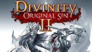 Divinity: Original Sin 2 - превью игры