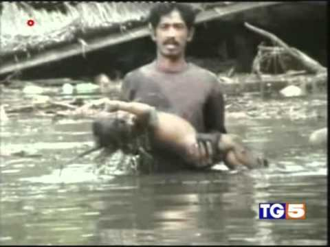 tsunami 2004 indonesia