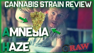 cannabis Strains In The UK - AMNESIA HAZE - Cannabis Strain Review (Weedview RAW Editions)