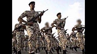 جيش المملكة العربية السعودية | Army of the Kingdom of Saudi Arabia