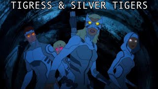 Young Justice 3x15 : Tigress & Silver Tigers