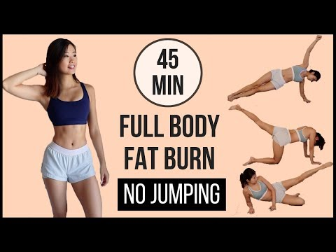 45-min-full-body-fat-burn-hiit-at-home-with-no-jumping-(arms,-abs,-back,-thighs-&-legs)-◆-emi-◆