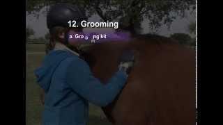12 Grooming