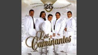Play Ley Del Monte