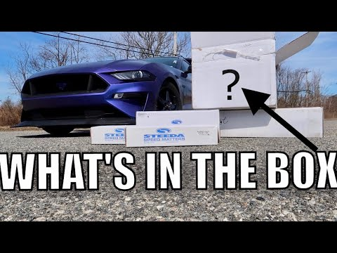THEY SENT ME HARDCORE RACE MODS FOR MY - MUSTANG GT!