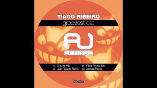 Tiago Ribeiro - Grooviest Cat (Joao Teixeira Remix)