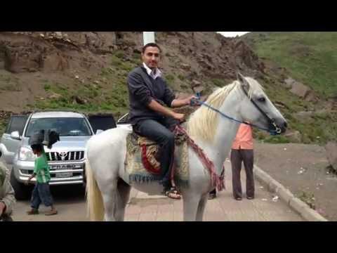 Yemen Life - Fighting over Horses اليمن - اب Ibb 2013