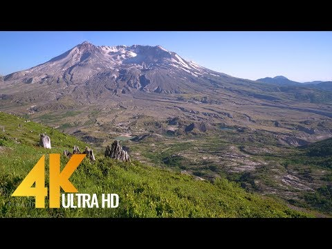 4K Mountain - Sweeping View of Mt. St. Helens | Relaxing Nature  & Bird Signing - 1 HR