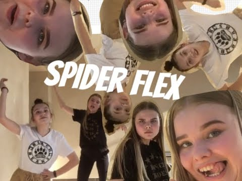 Тупо флекс пауков