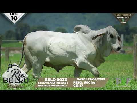 LOTE 10   BELO 3030