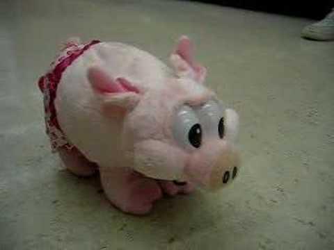 valentine's pig