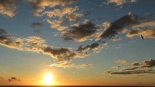 By Salta38: Michael Jackson Earth Song-Песня Земли