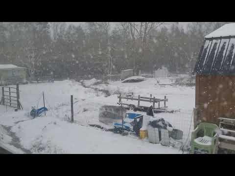 South East Ga snow... (Pt3) 01-03-2018  // 10:30pm