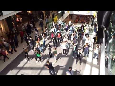 Flash Mob Zagreb   City center one HD