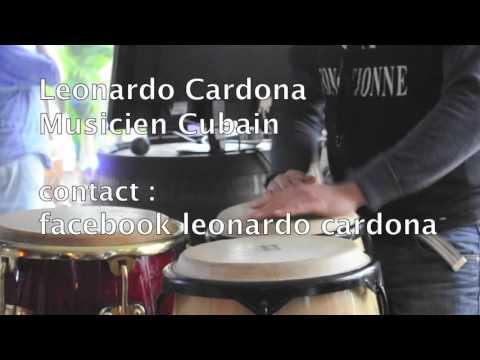 Leonardo Cardona Animation musicale
