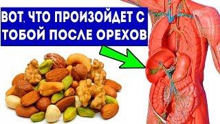 Вот что случится, если орехи кушать каждый день (10 причин кушать орехи)