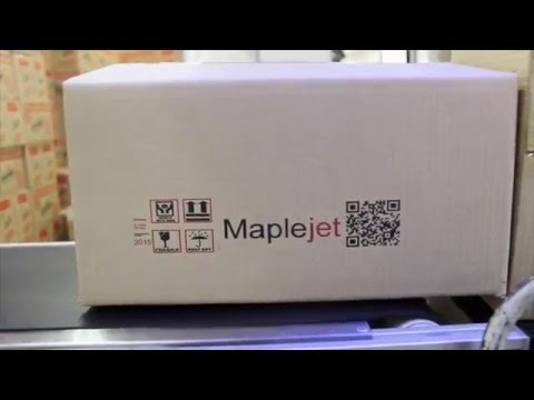 Bi Color Inkjet Printer for Printing on Cartons