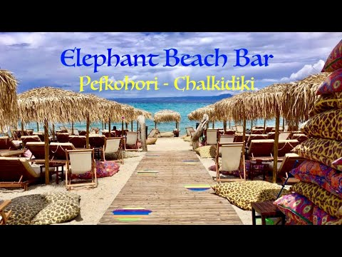 Elephant Beach Bar