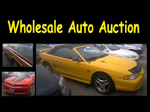 Auto Auction Cars Wholesale Auctions for Used Car Dealers Video