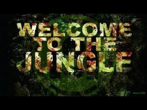 Alvaro & Marcer vs. Carnage & Borgore - Welcome To The Jungle Incredible (L.AnJel DJ edit)