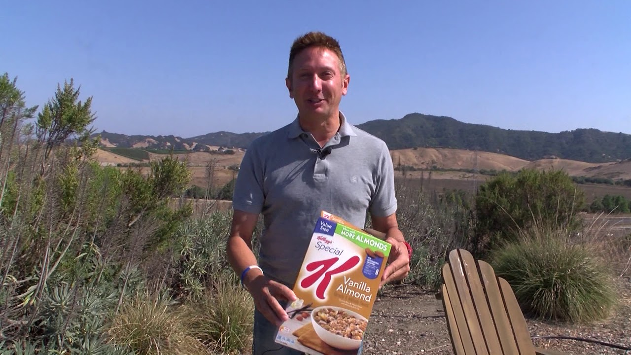 How to quickly turn a cereal box into an eclipse viewer