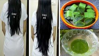 కలబంద లో ఇది కలిపి రాస్తే మీ జుట్టు ఆగకుండా పెరుగుతూనే ఉంటుంది..aloe Vera for hair growth