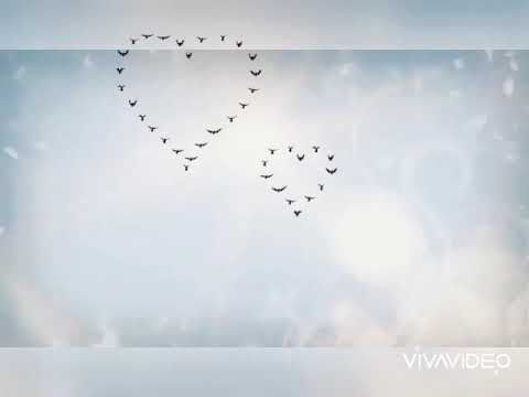 Тысячи историй о любви(аниме клип)2020 💋