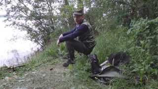 видео Рыбалка на пестовском водохранилище | KarpPoklevkin.ru - результативный способ, совет, прогноз ловли рыбы, аквариумные рыбки
