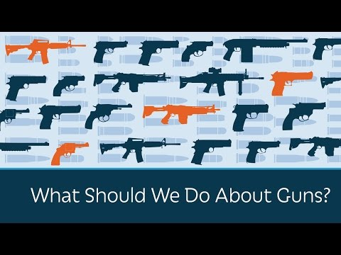 What Should We Do About Guns?