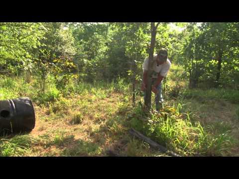 Bear Hunting Basics In Oklahoma
