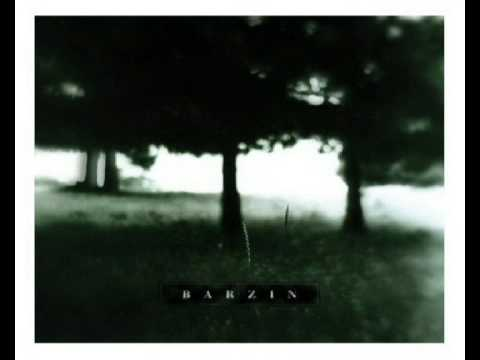 Barzin - Past All Concerns