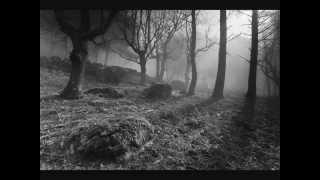 Deine Lakaien - Forest