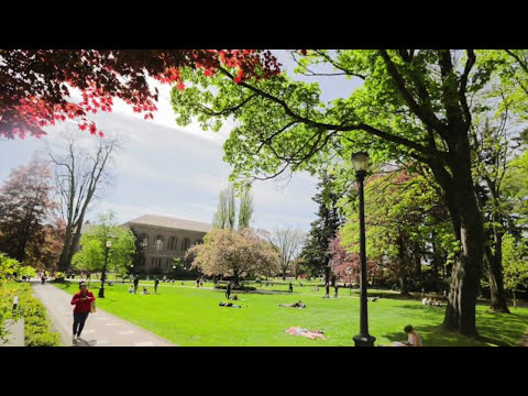 A year at Western Washington University