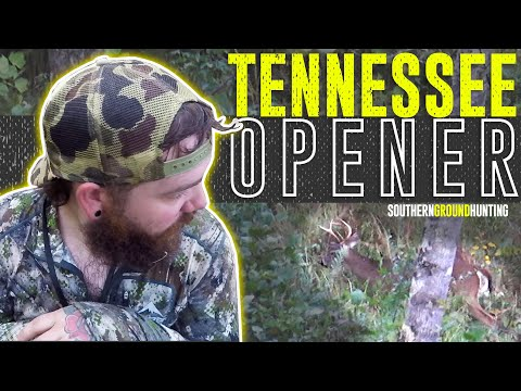 FINDING EARLY SEASON BUCKS IN TENNESSEE | Opening Day | Public Land Hunting