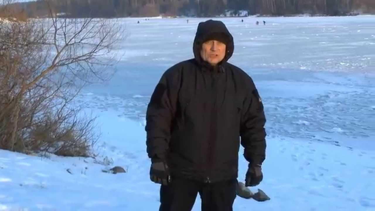 d3348efa Зимняя куртка тактическая SOFT-SHELL HUSKY TACTICAL Black - Военторг