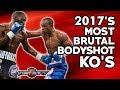 FIGHT HUB TV'S MOST BRUTAL BODYSHOT KNOCKOUTS OF 2017!