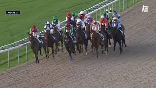 Vidéo de la course PMU PRIX DE SAINTE-MERE-EGLISE